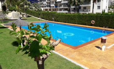 cala-villajoyosa-benidorm-apartment-pool2