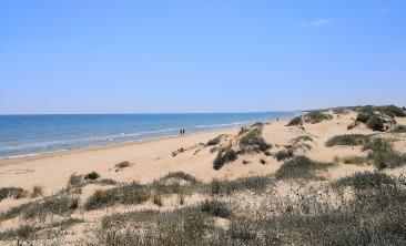 santa_pola_dunas_marina_rental1